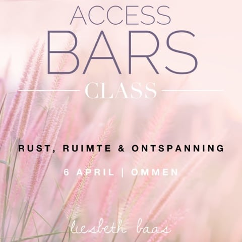 access bars liesbeth baas ommen