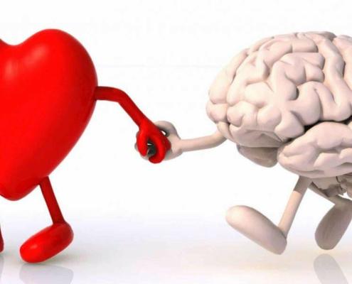 verbinding hart en hoofd liesbeth baas